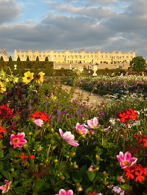 Flowers of Versailles
