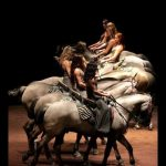 Shows of the equestrian Academy of Versailles
